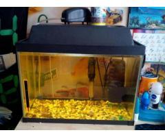 Аквариум 30 литров с рыбками